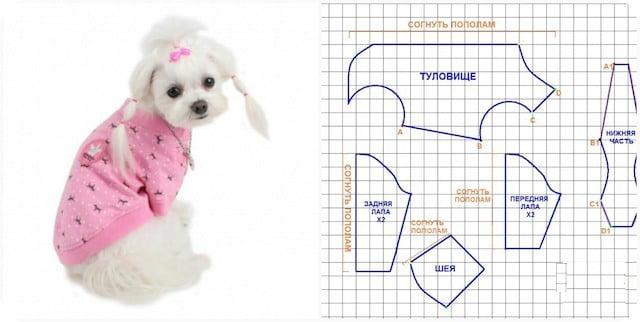 Готовые выкройки одежды для собак мелких пород своими руками e и игры губка боб