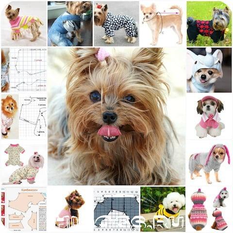Выкройки одежды для маленьких пород собак, какая одежда нужна, как сделать, какую ткань выбрать, как сшить.