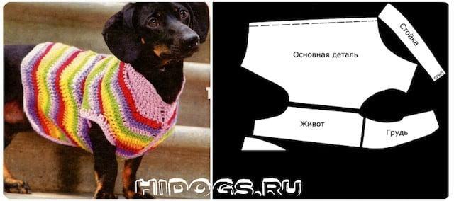 одежда для собак такс своими руками выкройки как сшить фото