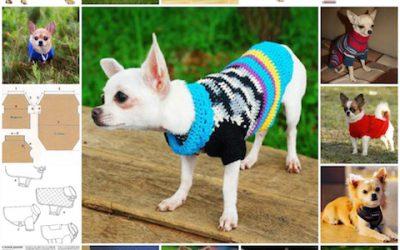 Одежда для чихуахуа, выкройки, самостоятельное шитье, вязание, как правильно сделать.