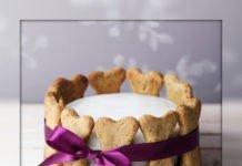 Собачий торт домашнего приготовления.