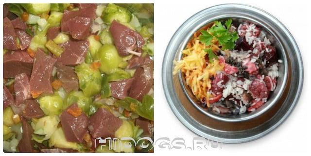 Как правильно кормить сибирских хаски, что можно давать, корма, как часто и сколько кормить.