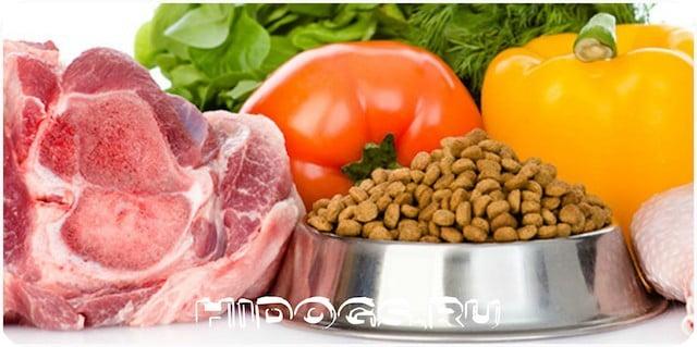 Чем кормить щенка и взрослую собаку - немецких овчарок, от о до 12 месяцев, особенности кормления, разрешенные продукты.