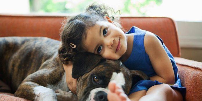 Собаки для семей с детьми; Собаки для детей