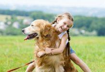 Лучшие породы собак для объятий