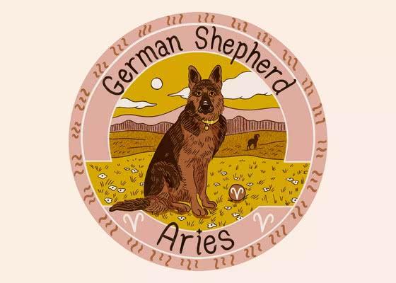 Немецкая овчарка для Овна (21 марта - 19 апреля); Ваша собака по знаку зодиака