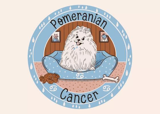 Померанский шпиц для Рака (21 июня - 22 июля); Ваша собака по знаку зодиака