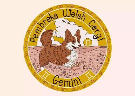 Вельш-корги для Близнеца (21 мая - 20 июня); Ваша собака по знаку зодиака