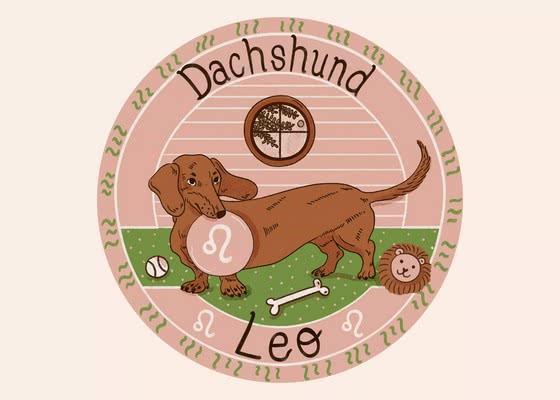 Такса для Льва (23 июля - 22 августа); Ваша собака по знаку зодиака