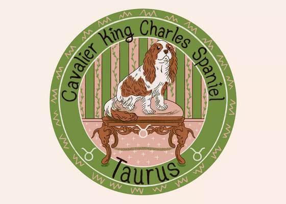 Кавалер-кинг-чарльз-спаниель для Тельца (20 апреля - 20 мая); Ваша собака по знаку зодиака