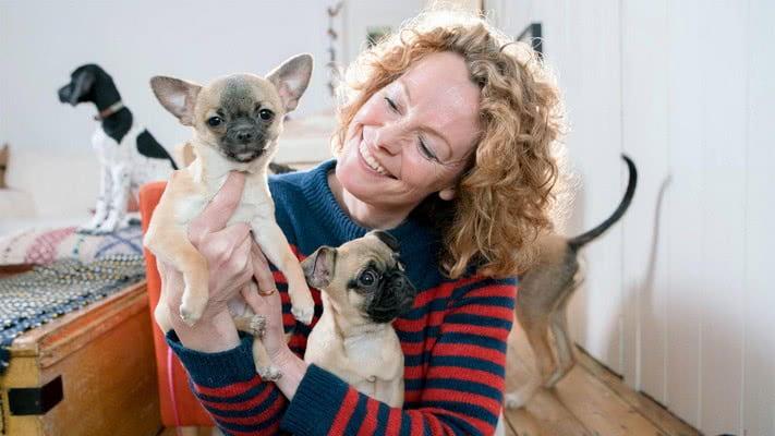 Дрессировка и социализация щенков